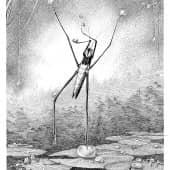 Водомерка (из серии зарисовка энтомолога любителя), художник Евгенияя Соколикова