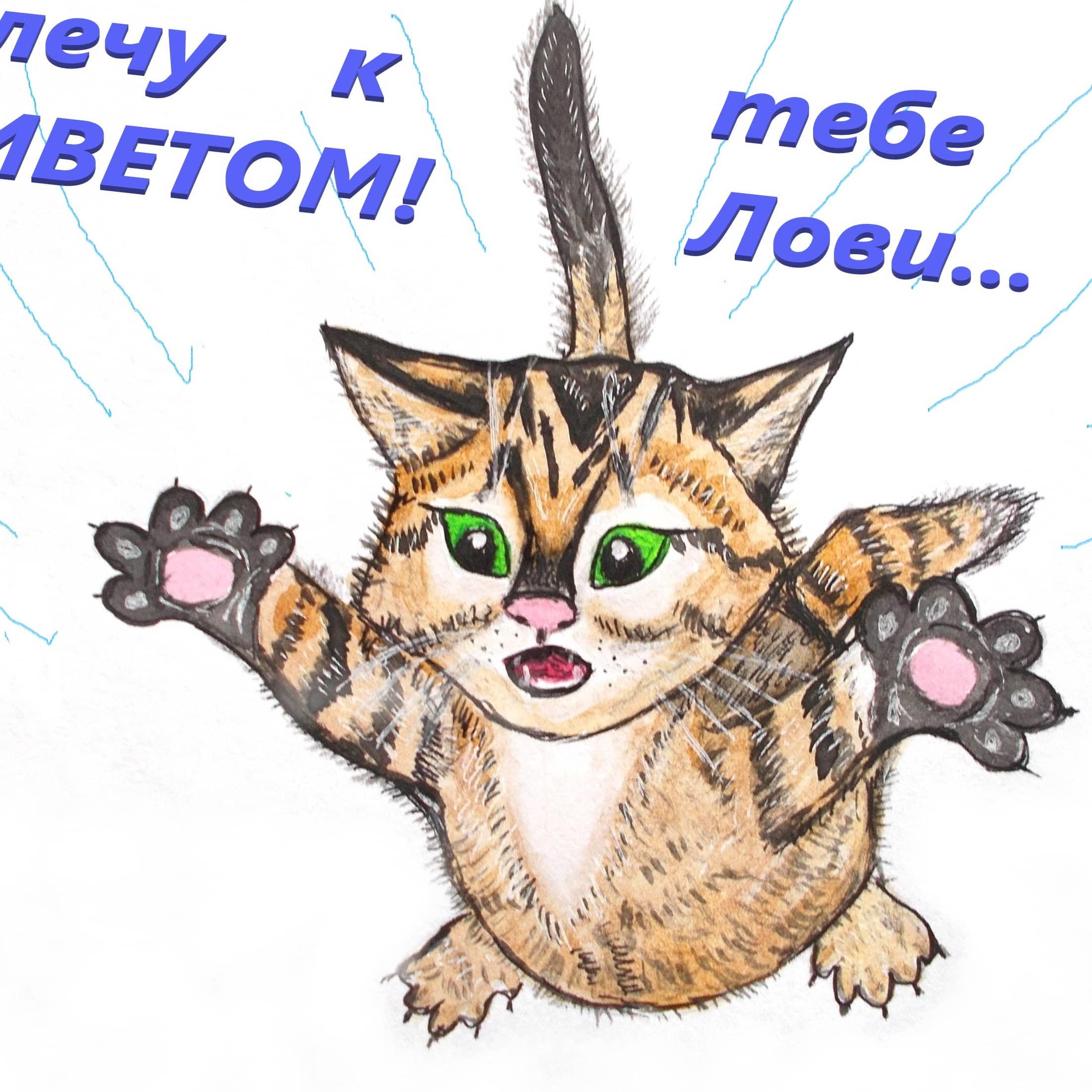 Полёт кота.