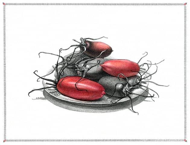 """Помидоры сорта """"Алые свечи"""". Другое шутливое название """"Красные жуки""""."""