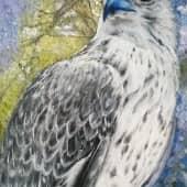 Белый кречет (1), художник Маргарита Щенина