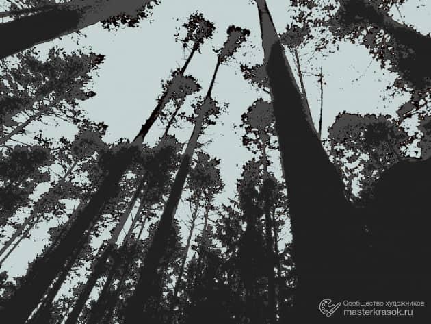 Высокий Лес