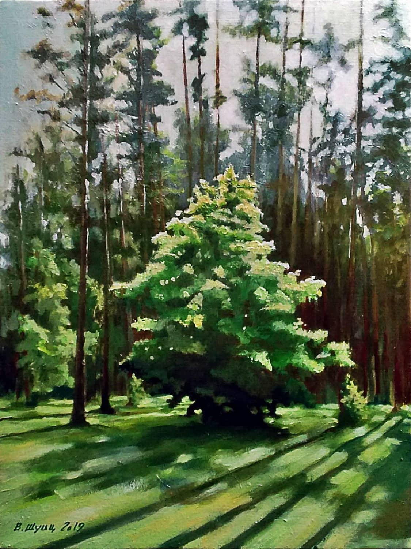 Деревце на краю леса