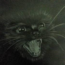 Кот в карандаше