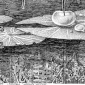 Водомерка (из серии зарисовка энтомолога любителя) (1), художник Евгенияя Соколикова
