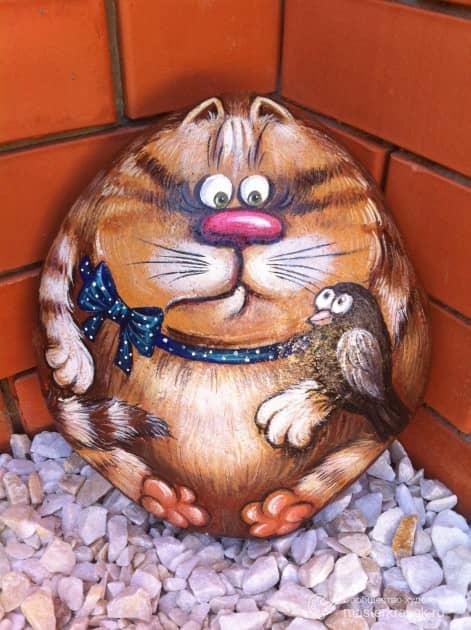 Кот на морском камне