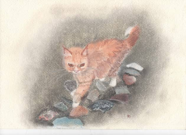 Кот на подворье