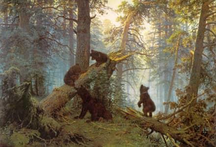 Как заблудиться в трех медведях