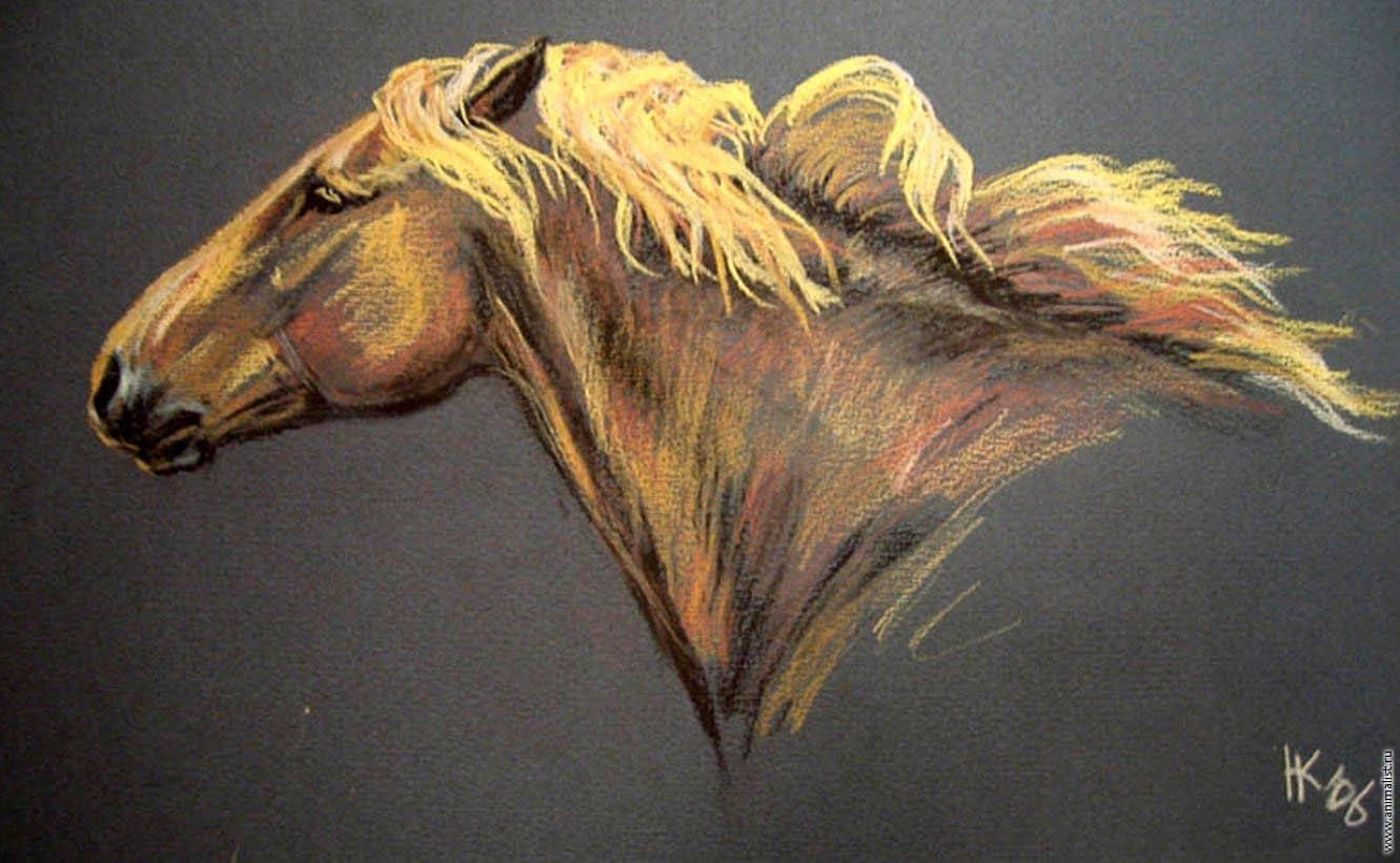 Урок: рисуем голову лошади