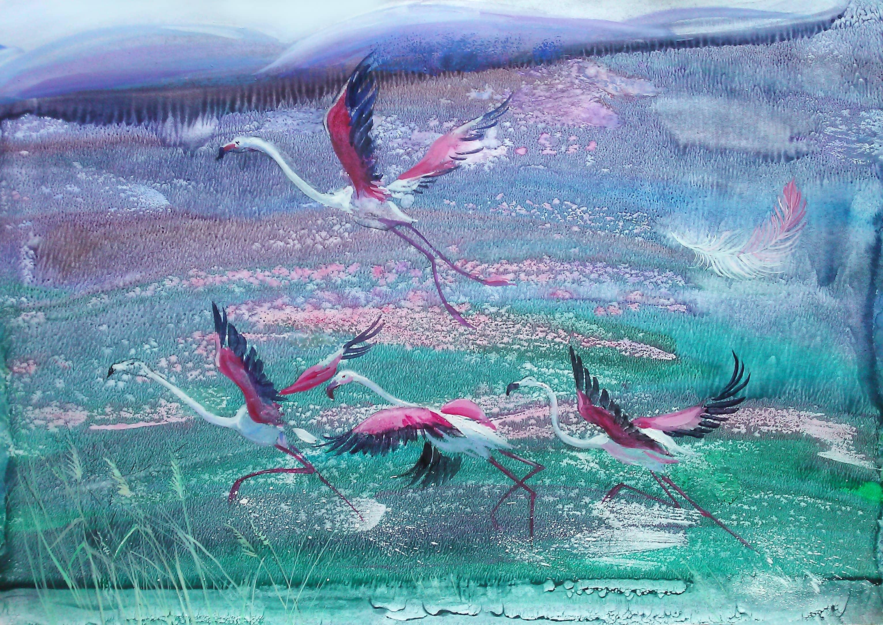 Земля фламинго