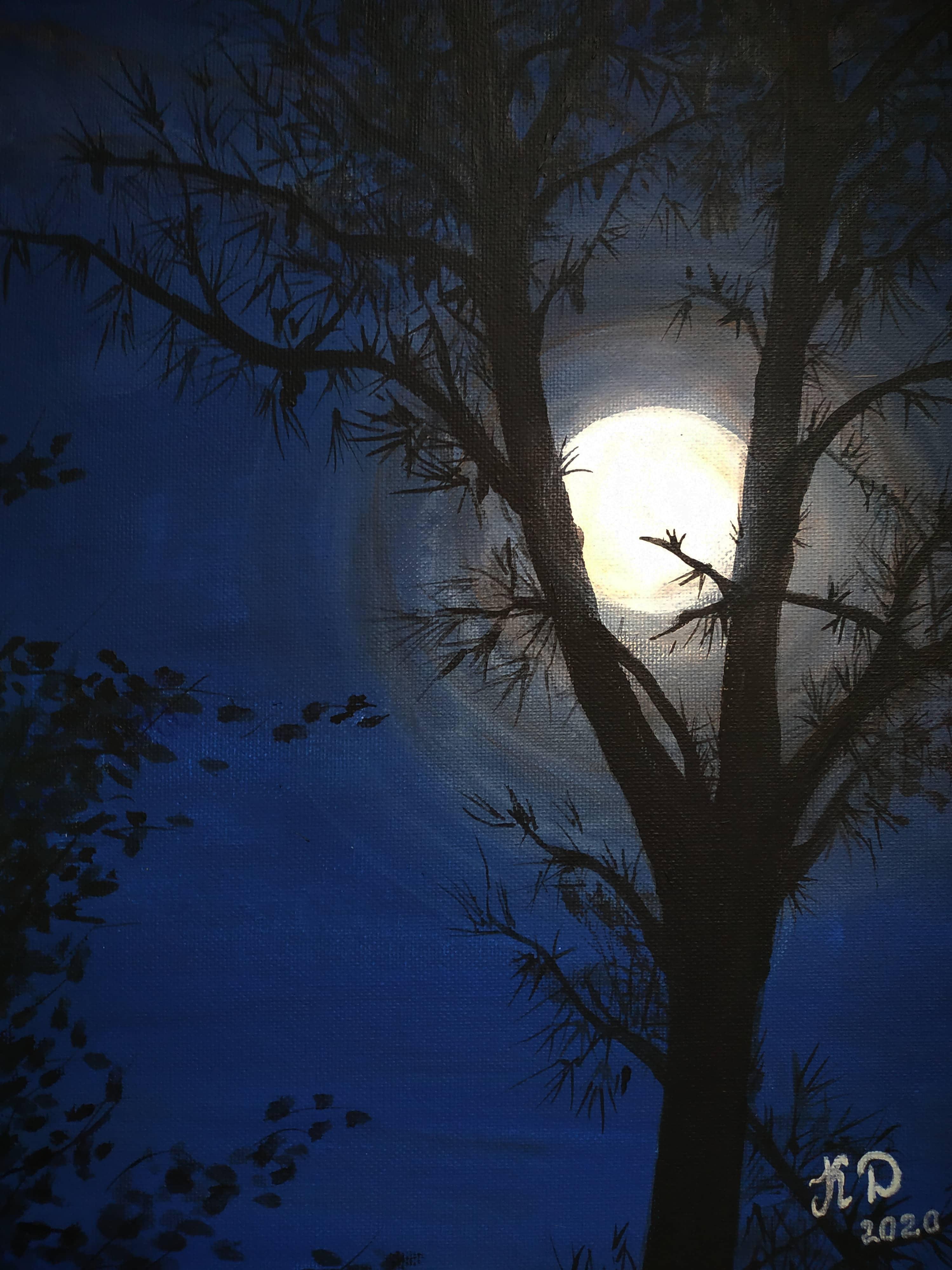 Полночь просияла