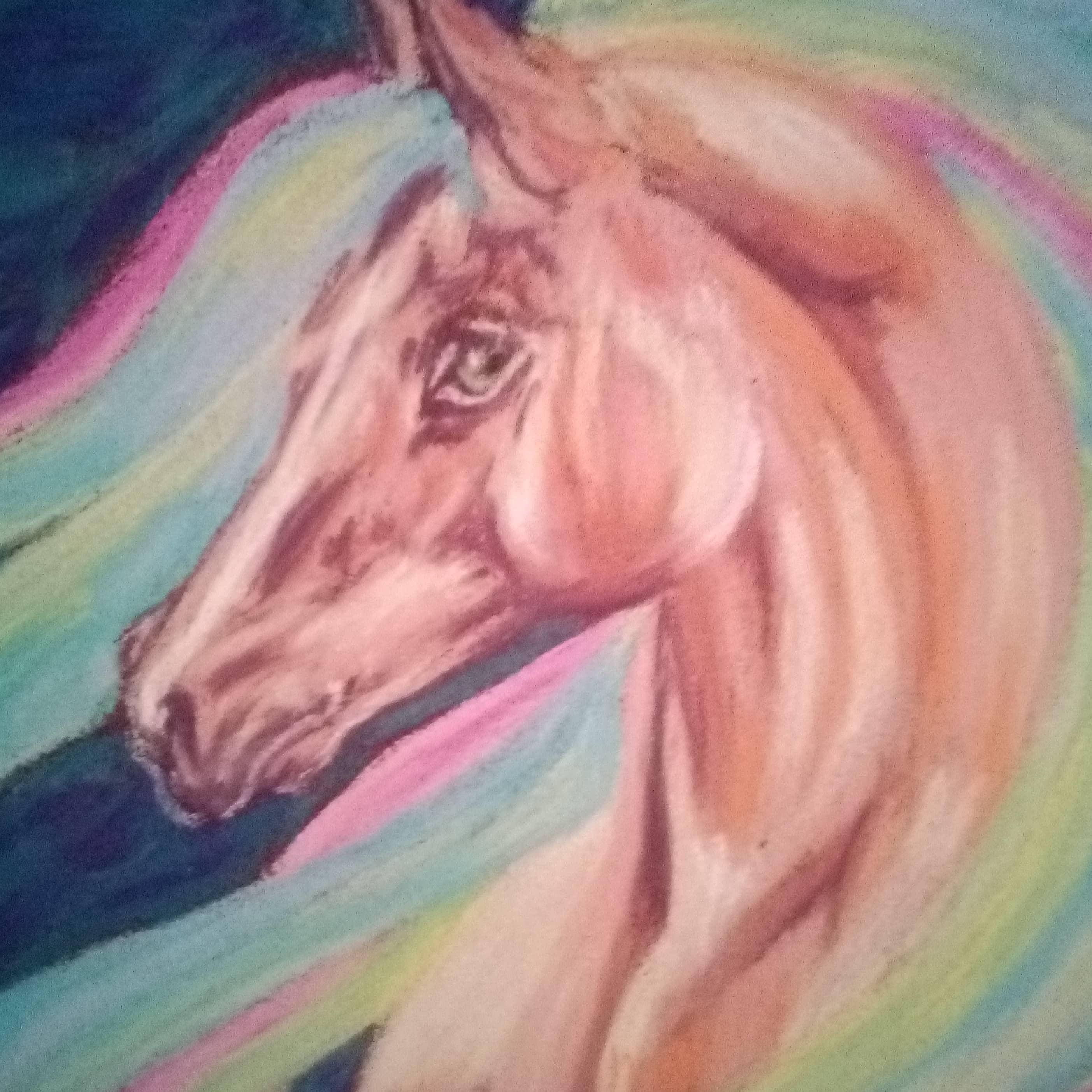 Конь в звёздном небе