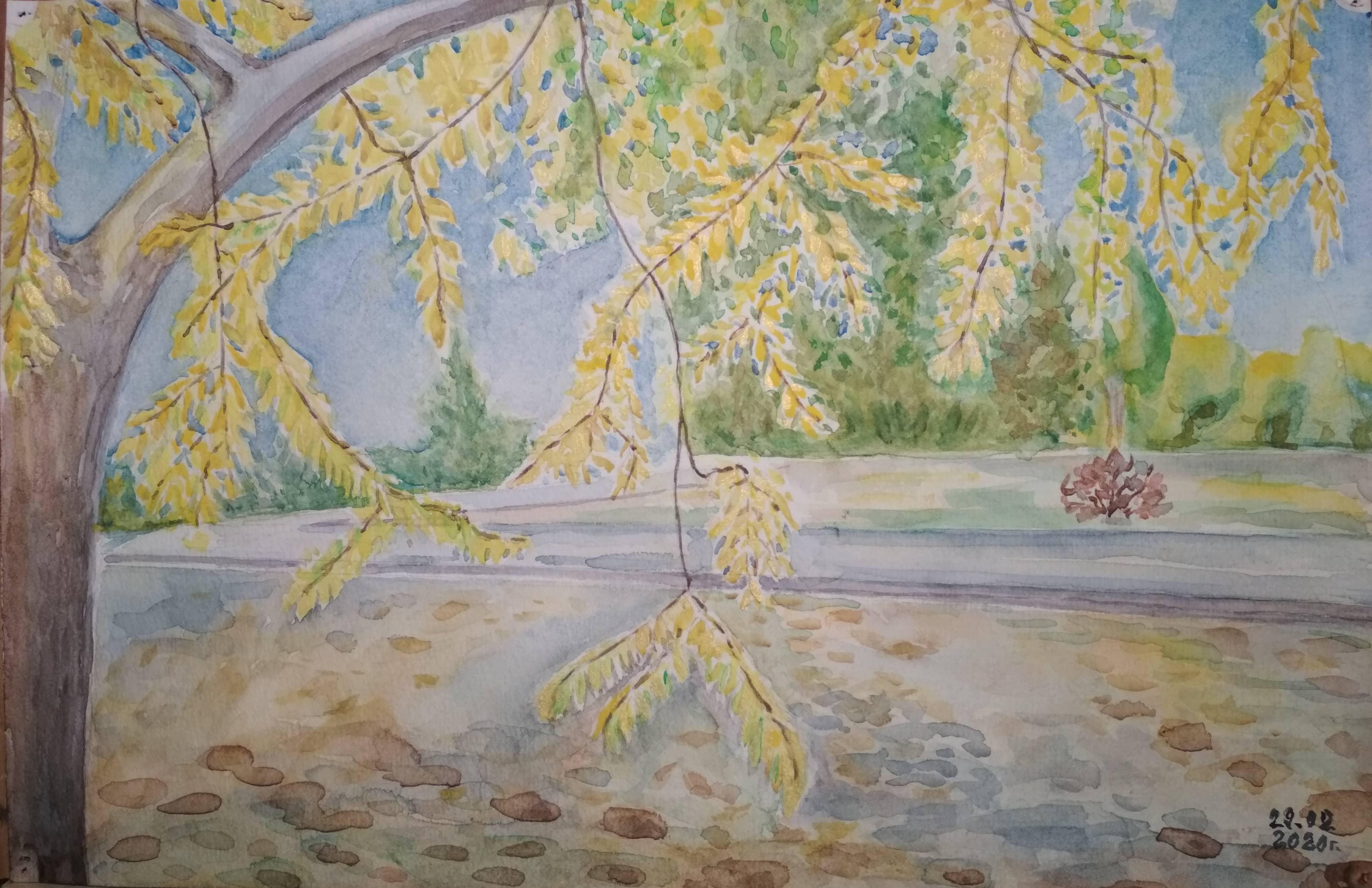 Золотые кружева осени