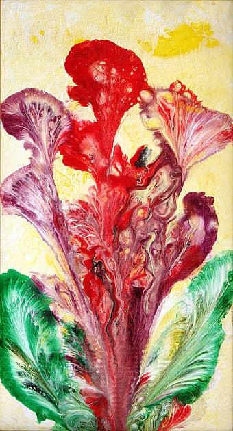 Цветы Илая