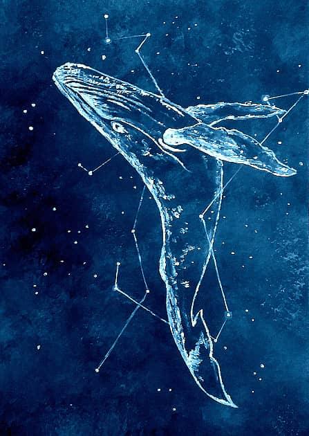 Кит, летающий в звездном небе