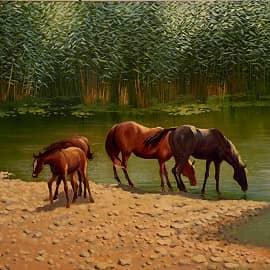 Полдень. Лошади на водопое