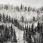 Туман, художник Kerry Moore