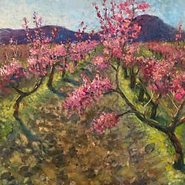 Персики цветут