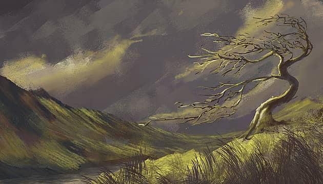 Growing wind