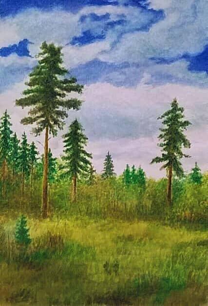Калужский лес