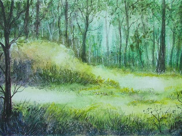 Акварельныи лес.