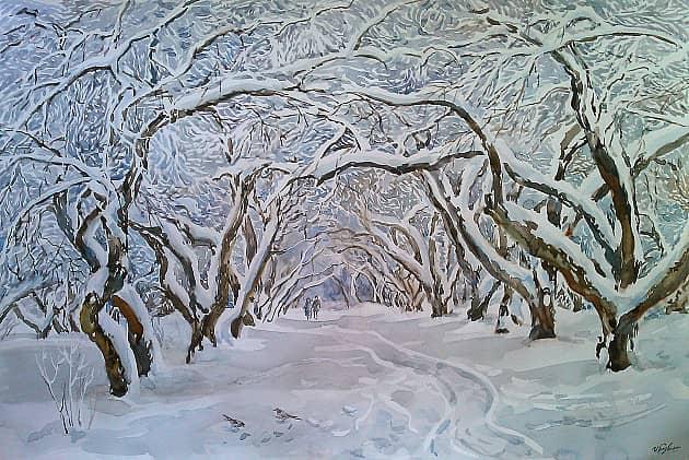 Кружево зимы