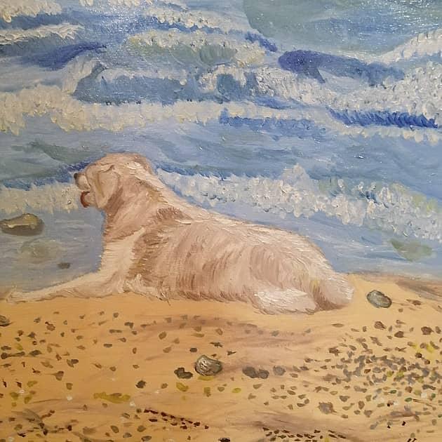 Пёс у моря