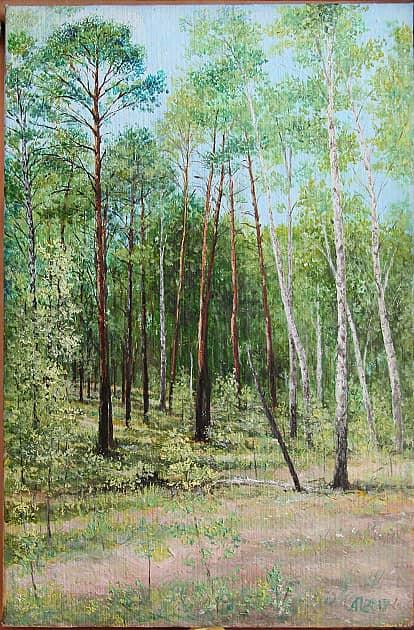Лес рядом с Волгой