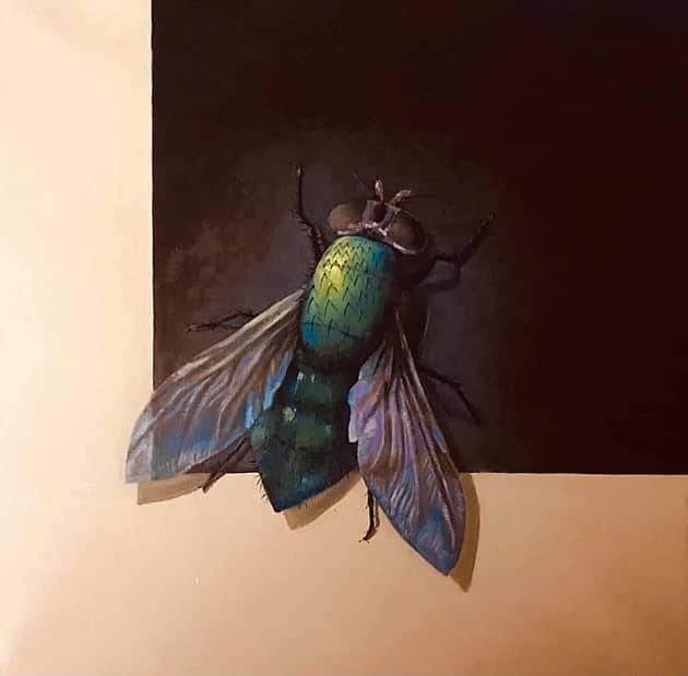 Парадный портрет мухи на фоне Черного квадрата